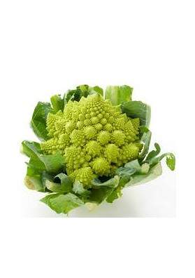 CHOU ROMANESCO PIECE