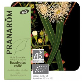 Huile essentielle Eucalyptus radié Pranarom 10mL