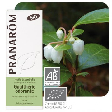 Huile essentielle Gaulthérie odorante Pranarom 10mL