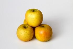 Pommes Dalinette